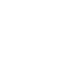 Project Blackbird logo